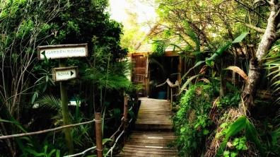 #blueskytravel #reisespezialist #südafrika #bambooguesthouse #knysna #gardenroute
