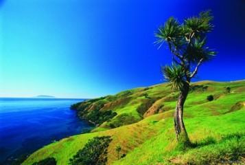 #BlueskyTravel #Reisespezialist #Neuseeland #Coromandel