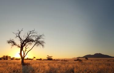 #blueskytravel #reisespezialist #namibia #desertcamp