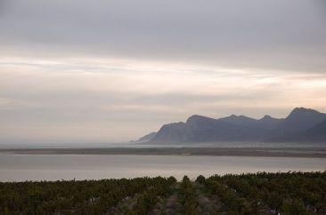 #blueskytravel #südafrika #reisespezialist #hermanus
