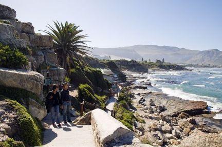 #bluskytravel #südafrika #southafrica #hermanus #wale