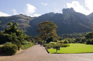 #bluskytravel #südafrika #southafrica #kirstenbosch #kapstadt #capetown