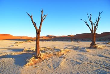 #blueskytravel #reisespezialist #namibia #sossusvleidesert