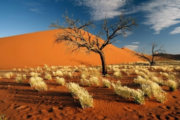 #blueskytravel #reisespezialist #namibia #namibdesert