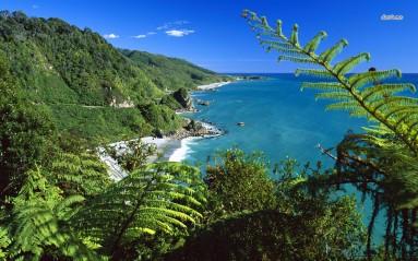 Paparoa National Park Westküste Neuseeland