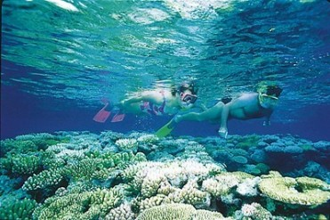 #greatbarrierreef #queensland #australia #touring