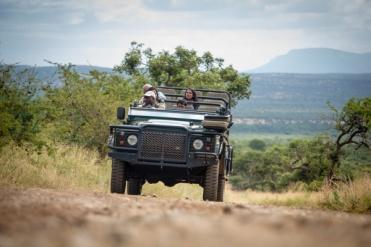 #südafrika #blueskytravel #krugerpark #safari