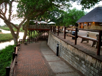 #blueskytravel #reisespezialist #südafrika #krugernationalpark #skukuzarestcamp