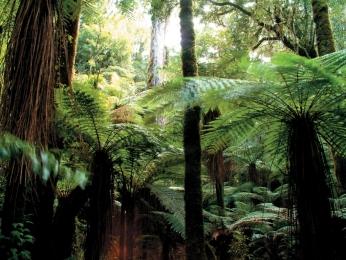 #BlueskyTravel #Reisespezialist #Neuseeland #taupo