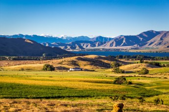Canterbury Plains Neuseeland NZ