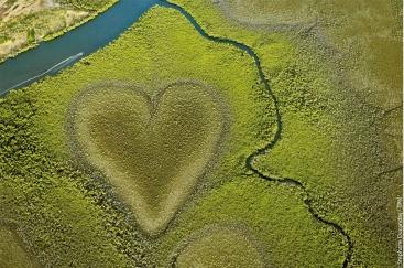 Herz von Voh Grand Terre Neukaledonien