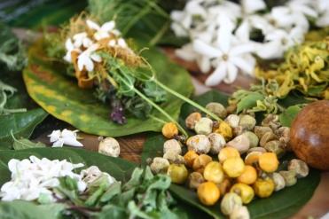 Früchte Blumen Tahiti