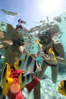 Unterwasser Tahiti