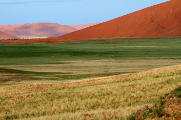 Namib Naukluft Nationalpark Namibia