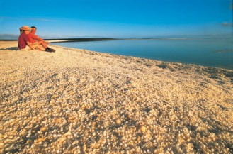 #australien #westaustralien #blueskytravel #reisespezialist #francoisperonnationalpark #denham #shellbeach