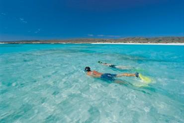 #australien #westaustralien #blueskytravel #reisespezialist #exmouth #caperangenatoionalpark #ningalooreef #walhai