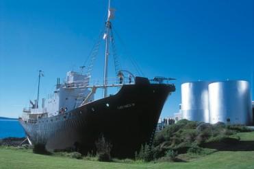 #albany #whalingmuseum #walfangmuseum #williambaynationalpark #elephantrocks #denmark #westernaustralia #australien #blueskytravel