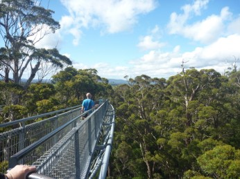 #valleyofthegiants #denmark #karritree #westernaustralia #australien #blueskytravel