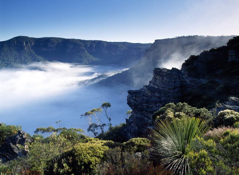 Blue Mountains Nationalpark New South Wales Australien NSW