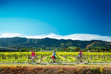Neuseeland Bike