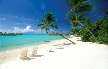 #blueskytravel #reisespezialist #tahiti #französischpolynesien #moorea #tahiti