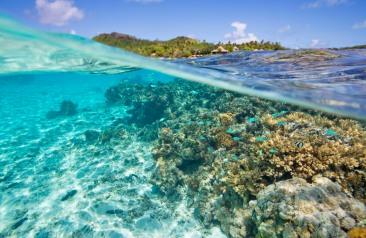 Pacific Resort Aitutaki Cook Islands Unterwasser