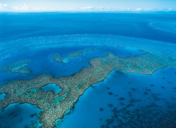 #blueskytravel #greatbarriereef#australien #queensland #reisespezialist