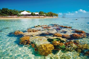 #blueskytravel #reisespezialist #australien #queensland #heronisland