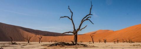 Header Sossusvlei Namibia