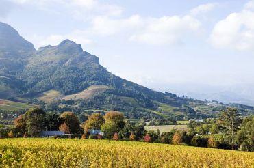 Stellenbosch Winelands Südafrika