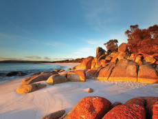#Australia #australien #tasmania # blueskytravel #freycinet