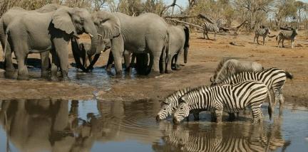 Makgadikgadi Salzpfanne Botswana