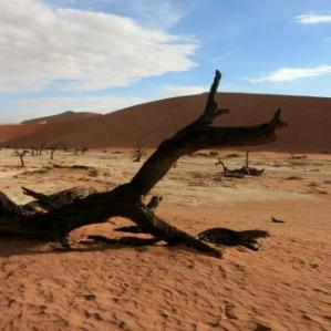 Namibia Deadvlei