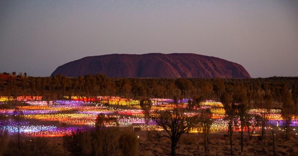 Field of Lights Uluru Ayers Rock Northern Territory