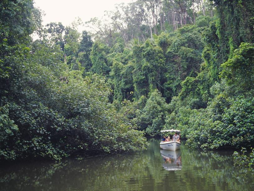 Atherton Tablelands Cairns Queensland Australien