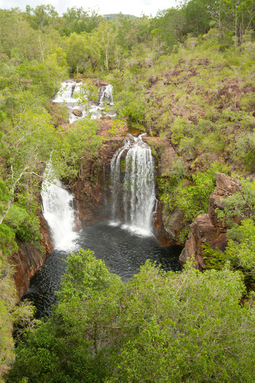 Florence Falls Litchfield Nationalaprk Northern Territory NT Australien