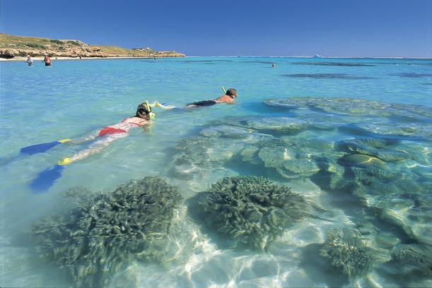 Schnorcheln am Ningaloo Reef Coral Bay Westaustralien WA