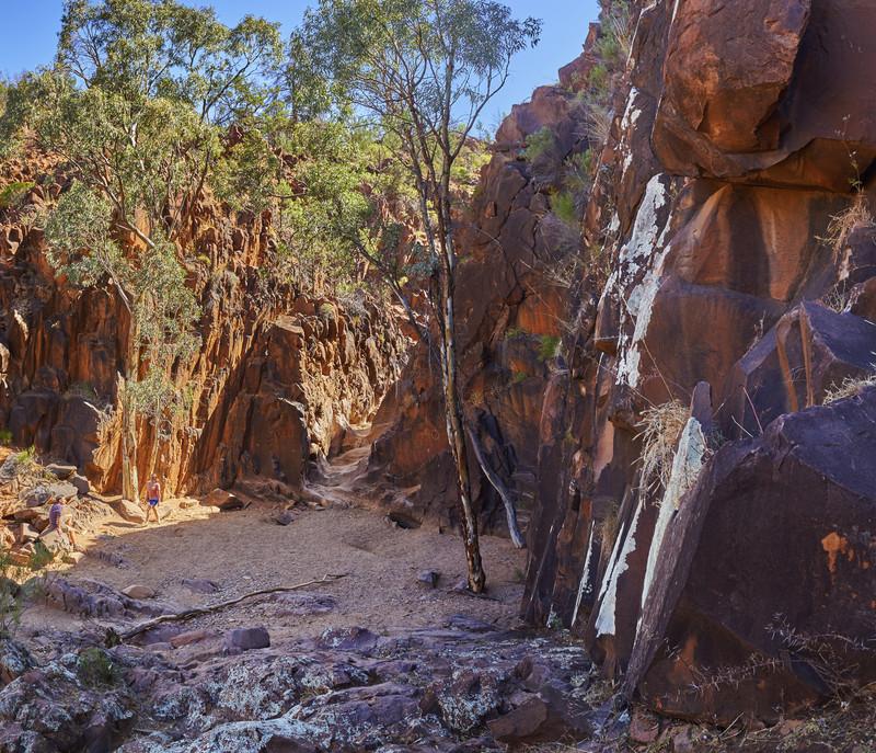 Alligator Gorge Südaustralien