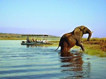 Chobe Safari Lodge Bootsafari Botswana