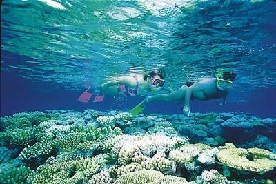 Great Barrier Reef Queensland Australien QLD