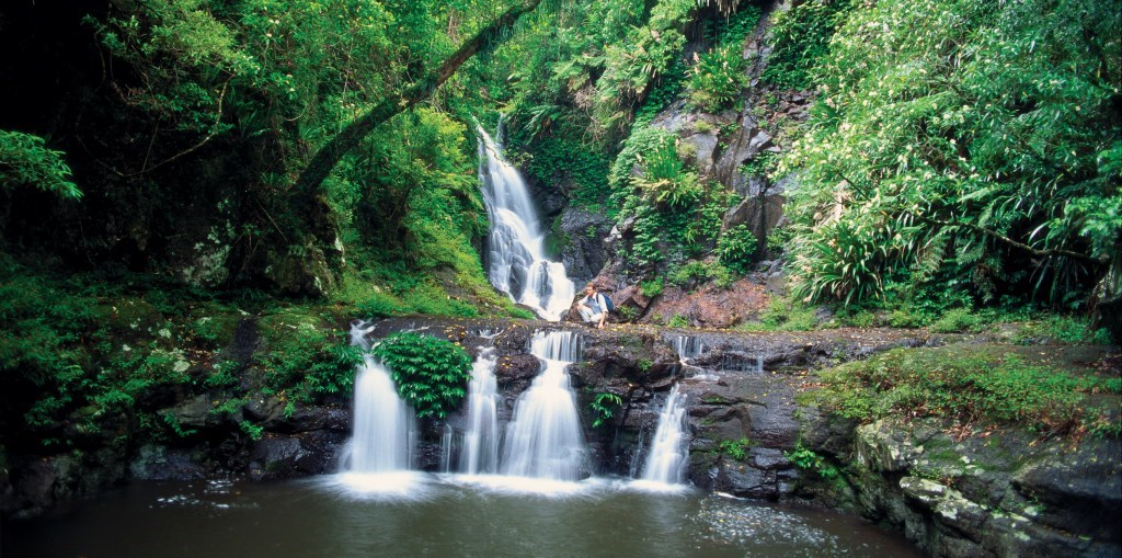 Elabana Falls Lamington Nationalpark Queensland