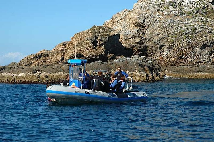 Tauchboot am Julien Rocks Sundive Byron Bay New South Wales Australien