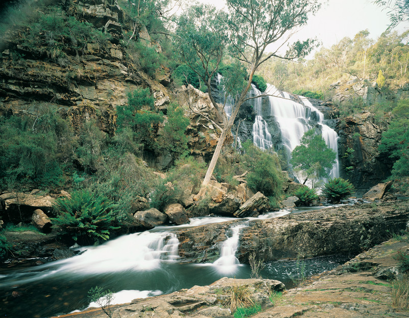 Mc Kenzie Falls Grampians Nationalpark Victoria Vic Australien
