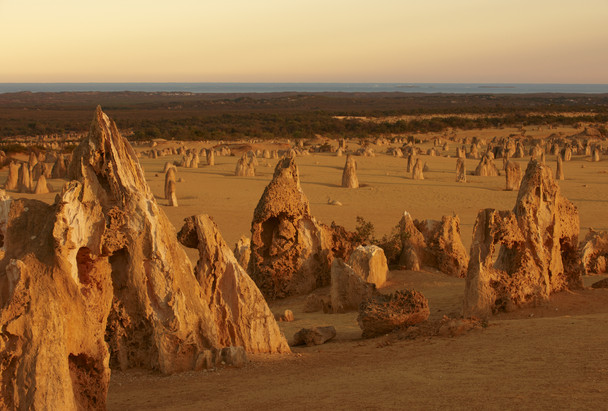 Pinnacles bei Sonnenuntergang Nambung Nationalpark Cervantes Westaustralien WA Australien AU
