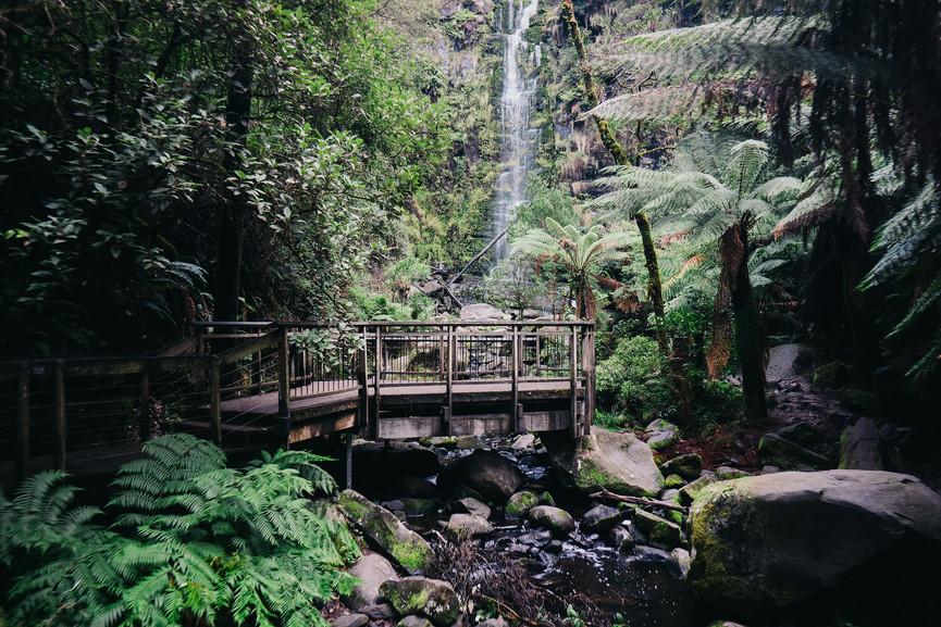 Erskine Falls Otway Nationalpark Great Ocean Road Victoria