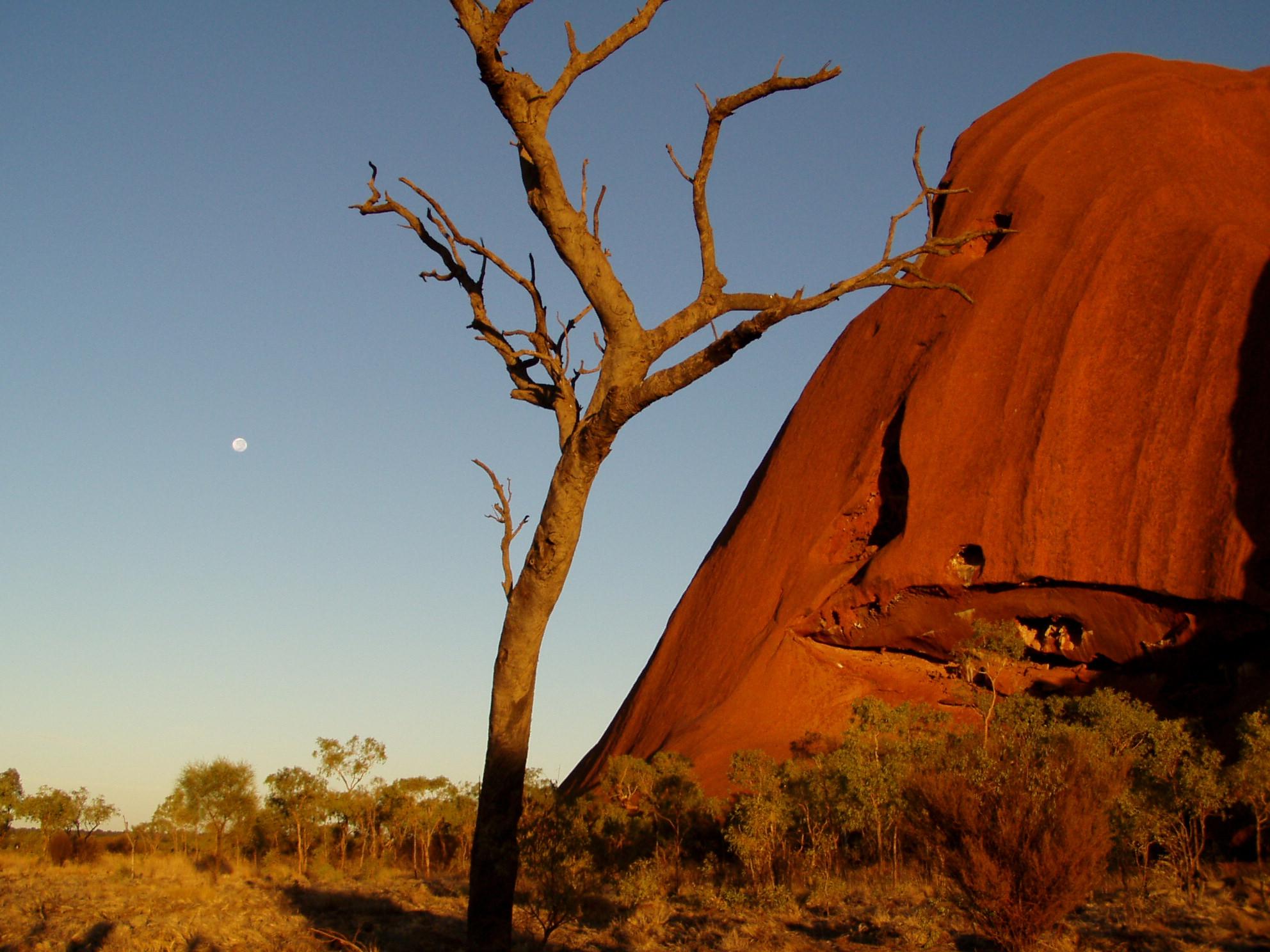 Teilansicht Ayers Rock Uluru Northern Territory NT Australien