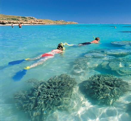 Schnorcheln am Ningaloo Reef Westaustralien Australien Quadrat