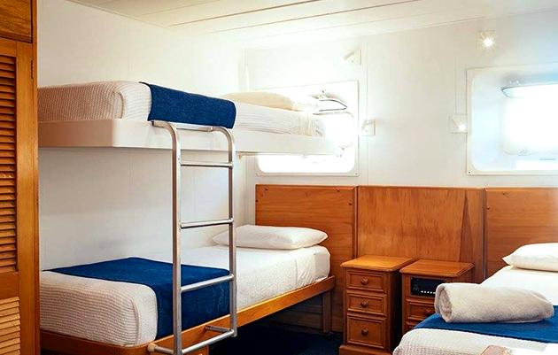 Cabin MV Reef Endeavour Captain Cook Cruises Fidschi Fiji