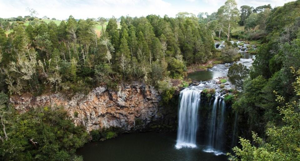Dangar Falls Dorrigo Nationalpark New South Wales