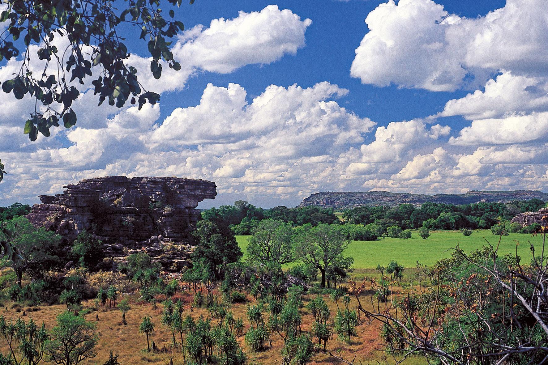 Ausblick auf Ubirr Rock Kakadu Nationalpark Top End Northern Territorry Australien